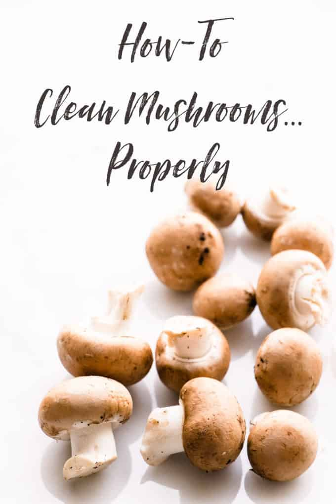 Knowing How to clean mushrooms properly is crucial to cooking success. Like with most things in cooking, it's easy... when you know how.