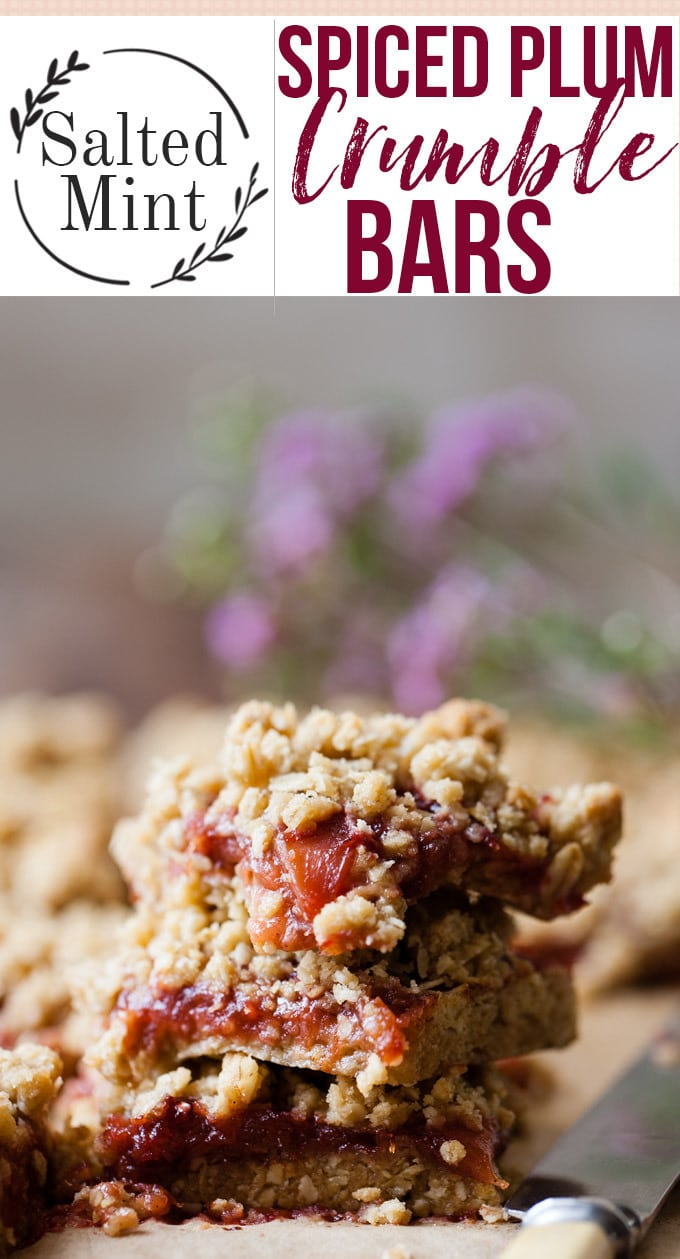These easy and cozy spiced plum crumble bars are the perfect fall snack. These bars are quick and easy to make and a little on the healthier side thanks to all those oats. This recipe uses a homemade fruit filling of spiced plum jam, but you can always use store-bought if you're in a hurry. #fallrecipe #dessertmasters #dessertrecipes